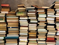 biblioteca-4