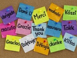 Non bastano le lingue per andare all'estero