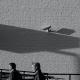 Controlli a distanza sul posto di lavoro: ecco le novità normative