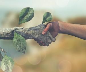 Chi certifica la green economy?
