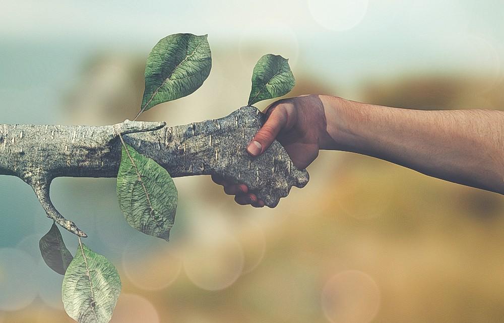 Chi certifica la green economy ha un jolly in tasca