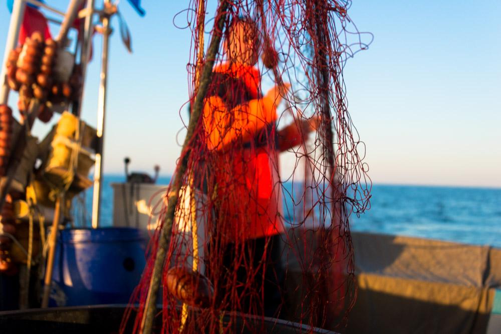 """""""ancora una rete in mare"""" di Osvaldo Danzi. Immagini a ®libero. La vita si condivide con tutti."""