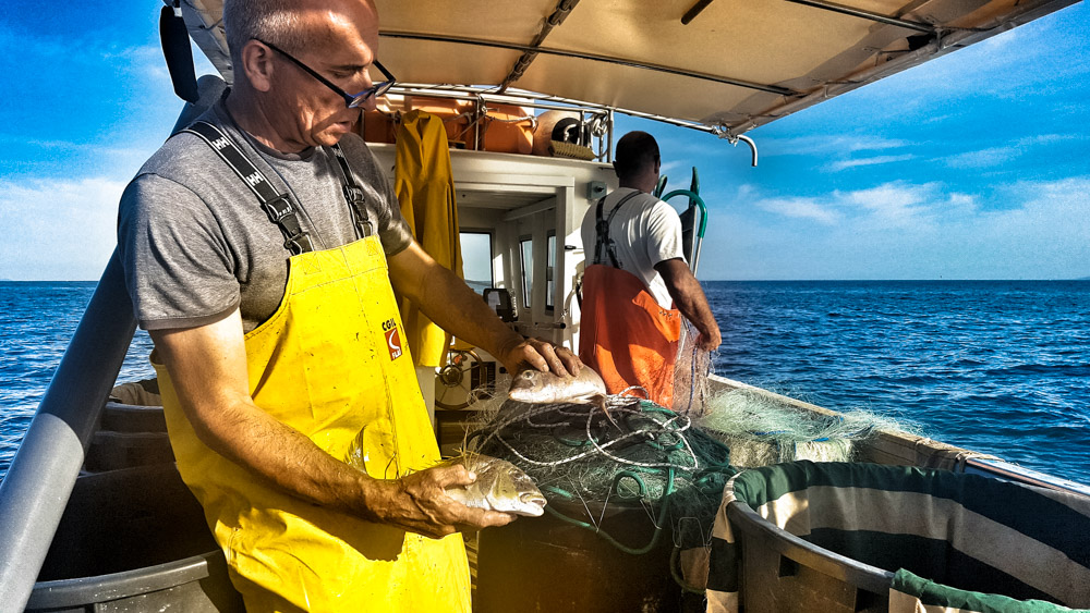 """""""nuova pesca"""" di Osvaldo Danzi. Immagini a ®libero. La vita si condivide con tutti."""