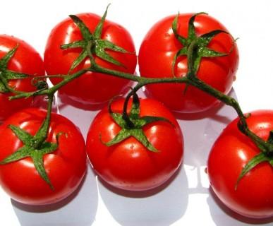mpatia da vendere, in salsa rossa