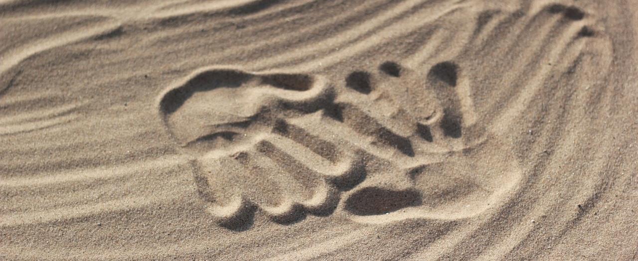 mani intrecciate nella sabbia: gruppi Balint di supporto