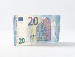 20 euro stropicciata, emblema del low salary