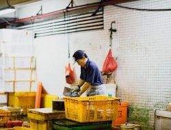 esempio di intraprendenza dei lavoratori stranieri: uomo orientale lavora del pesce
