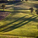 Terreni da coltivare sui colli di Pesaro.