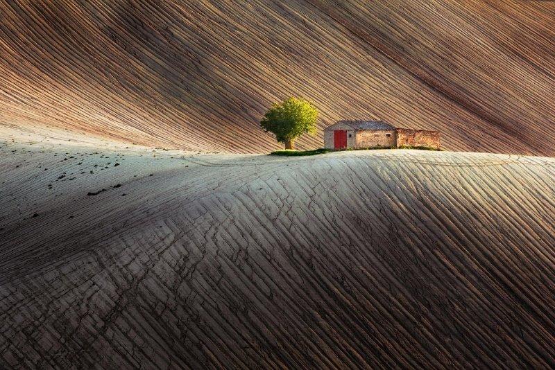 """Uno splendido paesaggio rurale unico delle Marche, la cosiddetta """"nuova Toscana""""."""