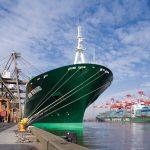 Una nave cargo cinese: una metafora del bisogno di logistica e sostenibilità