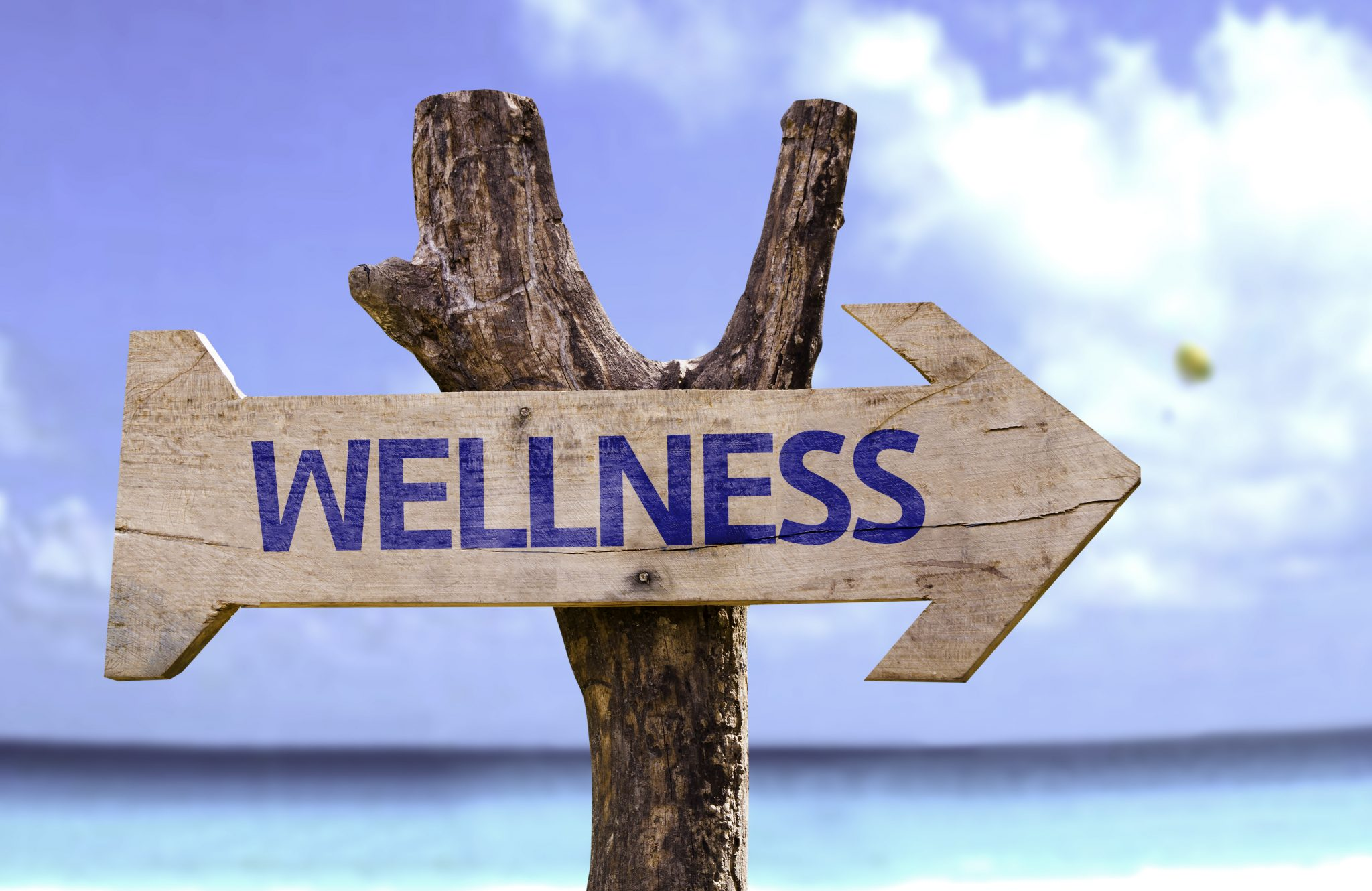 "Un cartello a freccia che recita ""wellness""... Valley?"