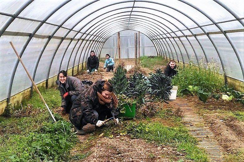 Agricoltura Sociale Lombardia, il valore di provincia. Altro che Milano