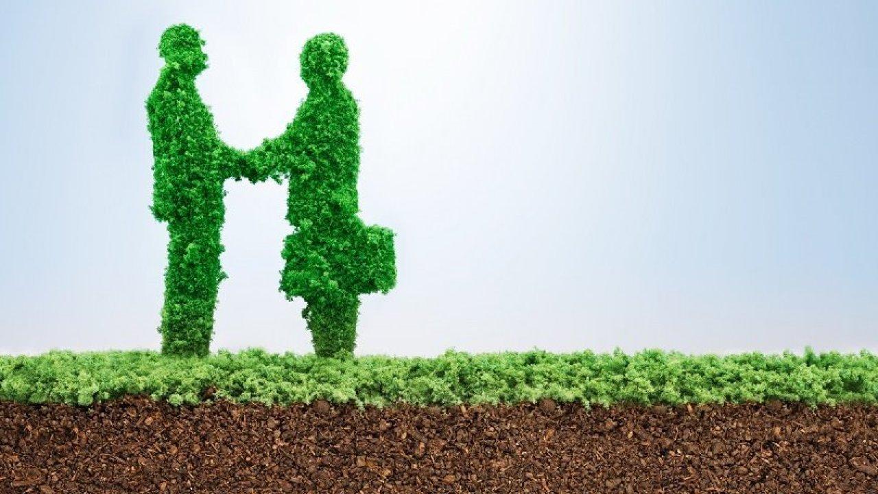 Finanza sostenibile: una siepe sagomata come due uomini d'affari che si stringono la mano