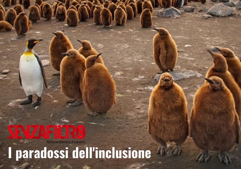 I paradossi dell'inclusione: un pinguino bianco e nero in mezzo a pinguini marroni.