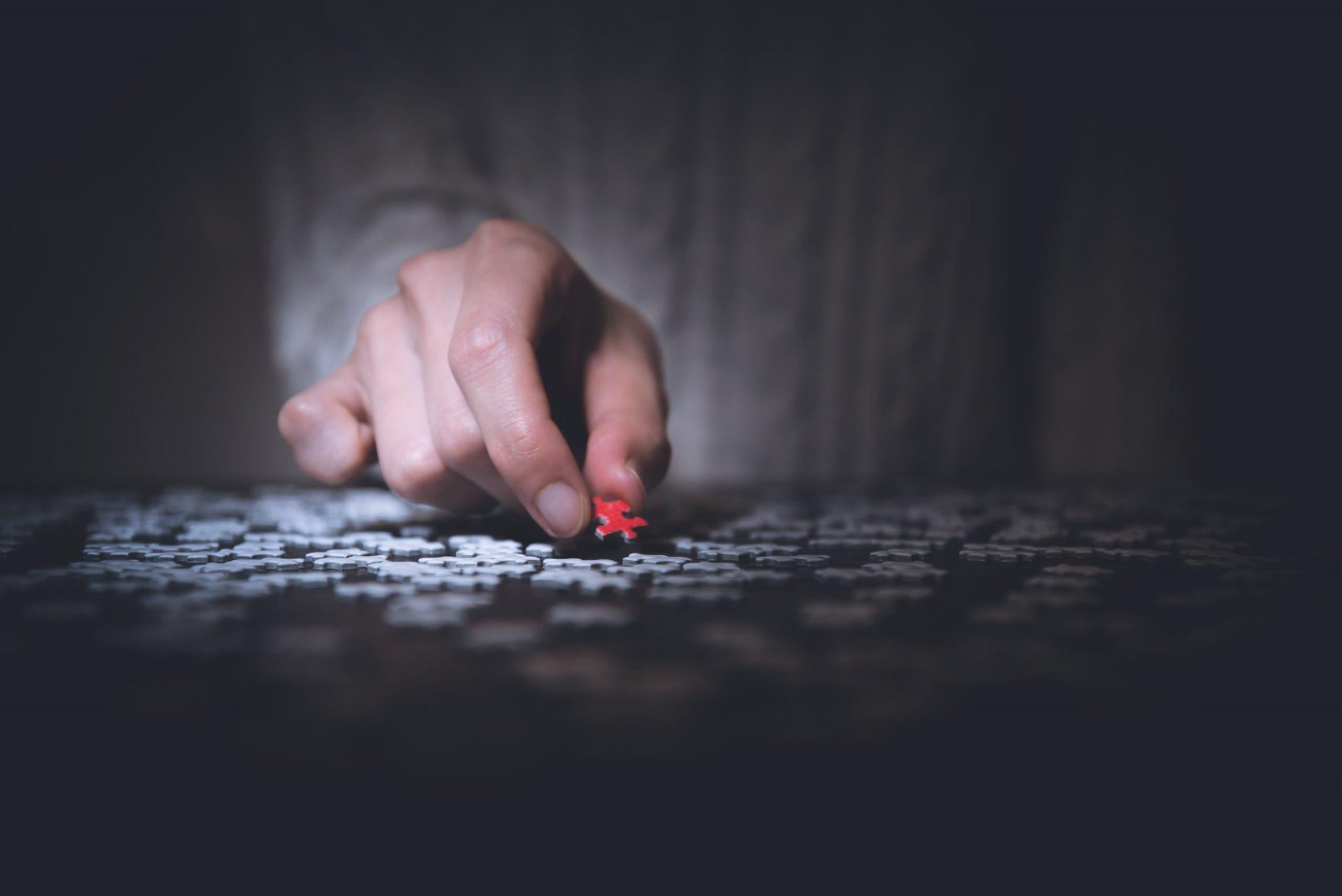Management plurale: le tessere non fanno il puzzle