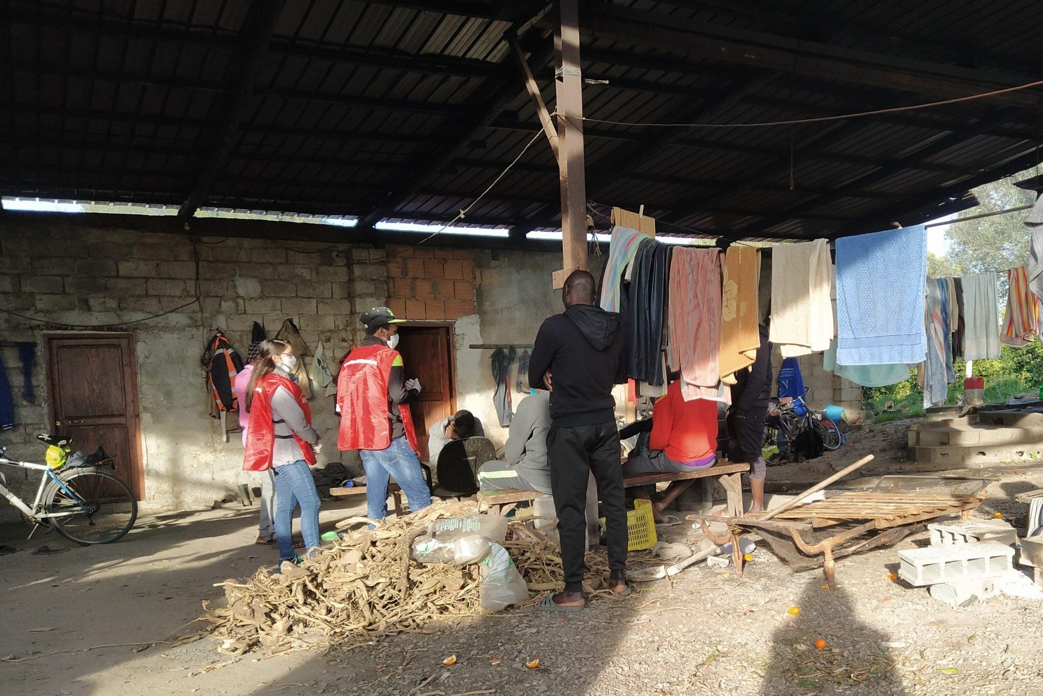 COVID-19, agricoltura a rischio: medici volontari in una baraccopoli di braccianti