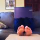 Rivoluzione coronavirus: lavorare da casa senza vergognarsi del privato