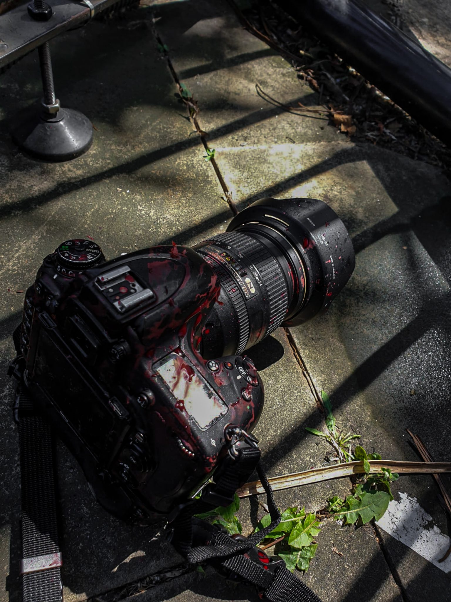 Dove osano i reporter: il fotogiornalismo sotto attacco