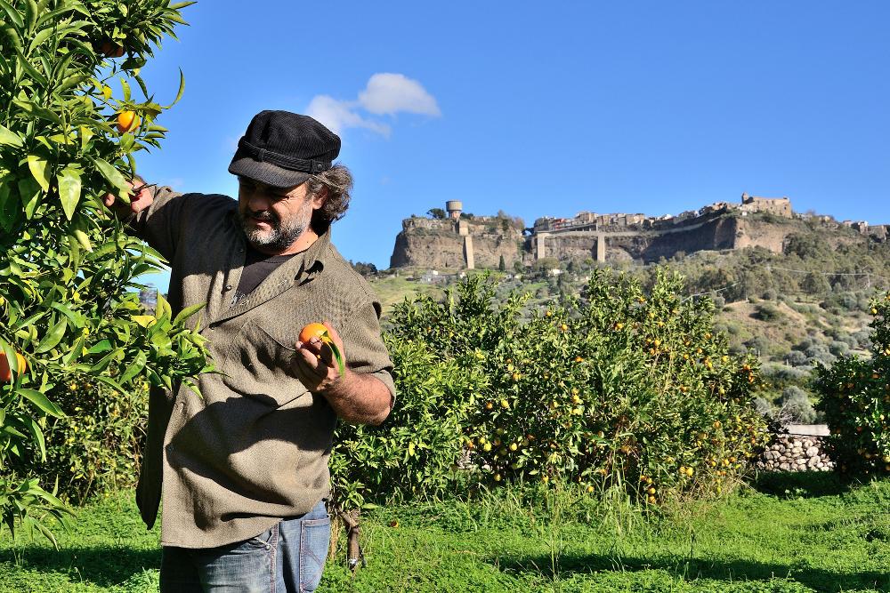 Il lavoro in Calabria ha fatto GOEL