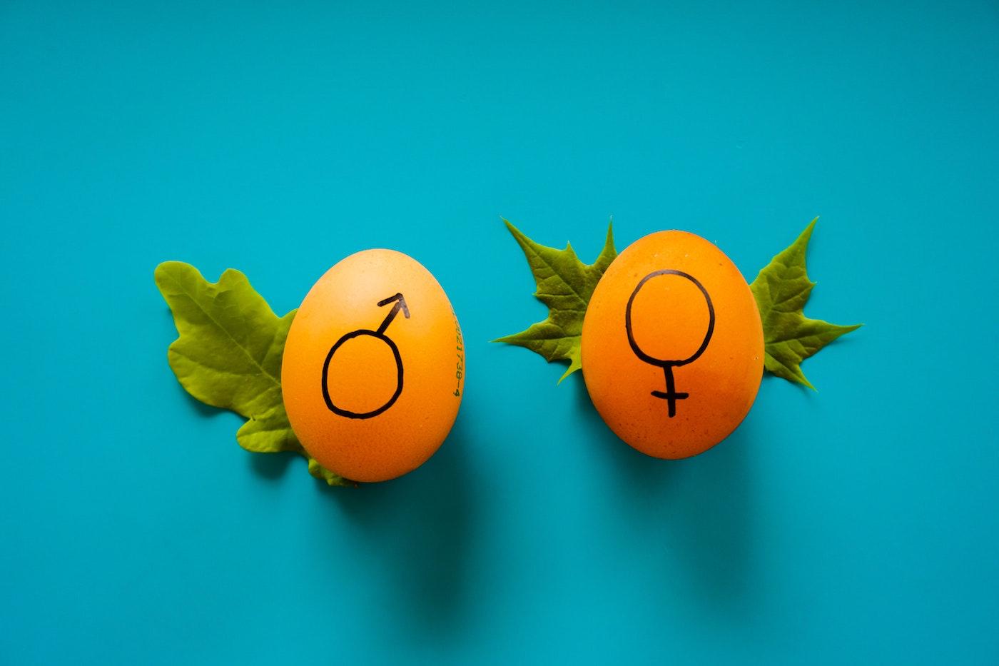 Questioni di genere: le aziende si formano