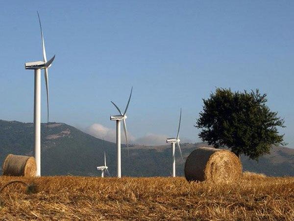 Puglia, transizione ecologica: le promesse se le è portate via l'eolico?