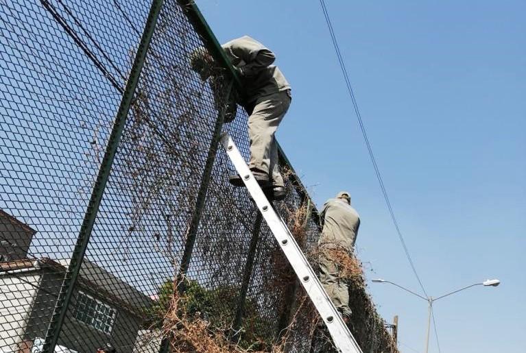 Reinserimento lavorativo dei detenuti: l'Italia ci crede?