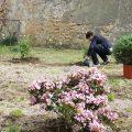 Il detenuto di un carcere minorile al lavoro in un giardino.