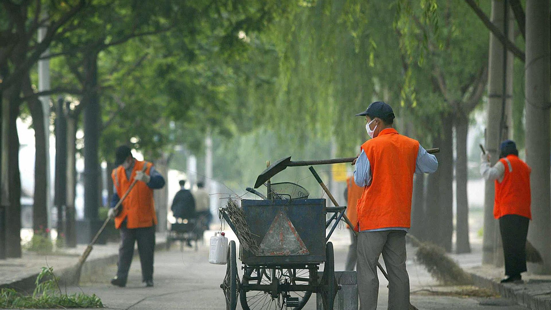 Reddito di Cittadinanza, è flop nei comuni: solo 4 su 100 lavorano per le amministrazioni comunali