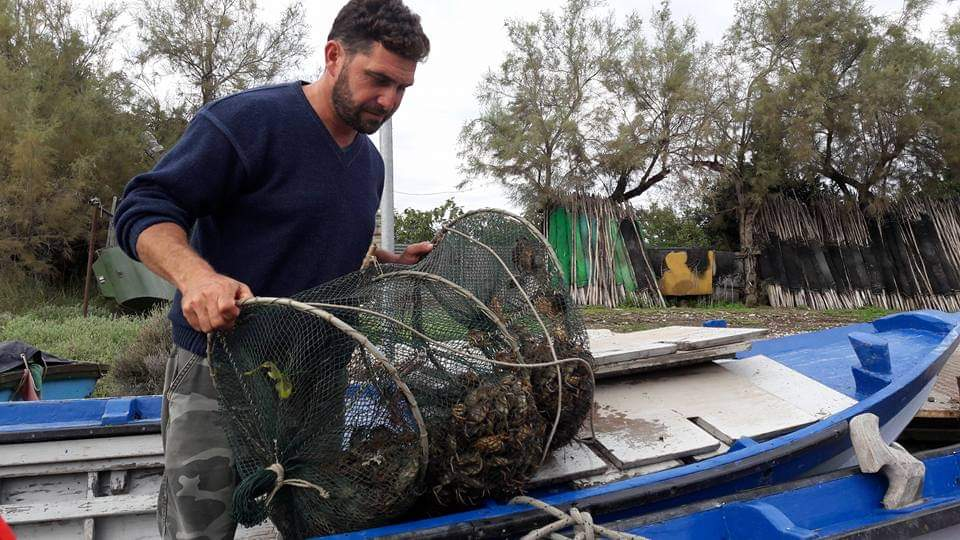 Quant'è fragile l'Adriatico: dalla pesca selvaggia alla sostenibilità