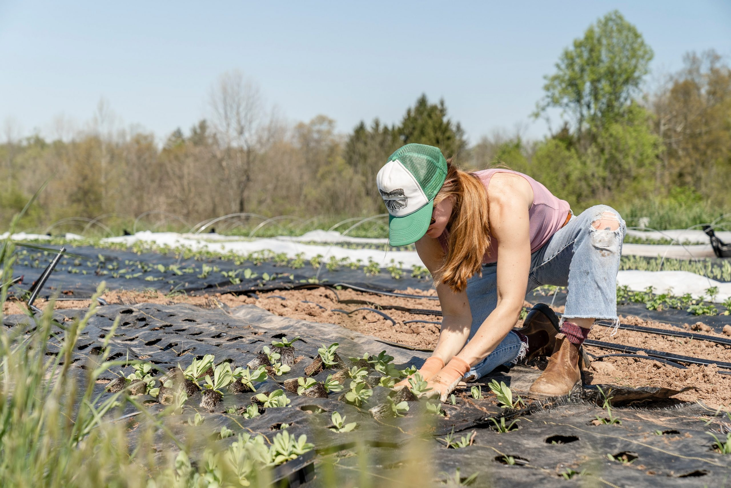 L'agricoltura biologica vende, ma non sempre paga